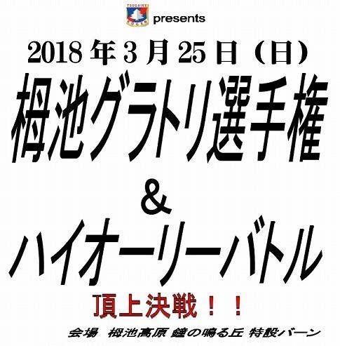 グラトリ大会表紙2018ブログ下.jpg