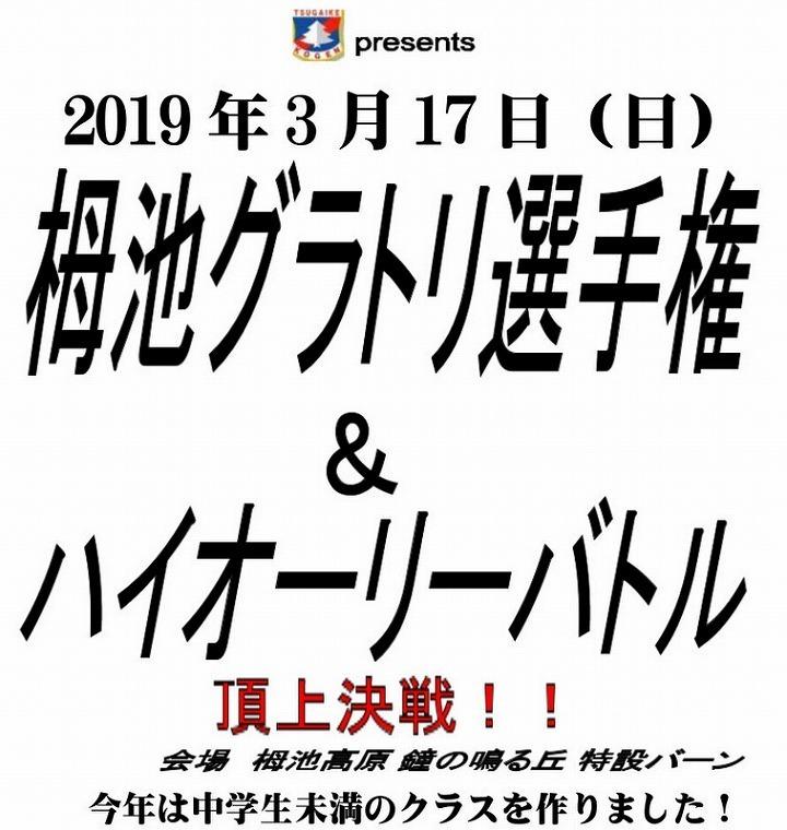 ブログトップグラトリ大会表紙2019.jpg